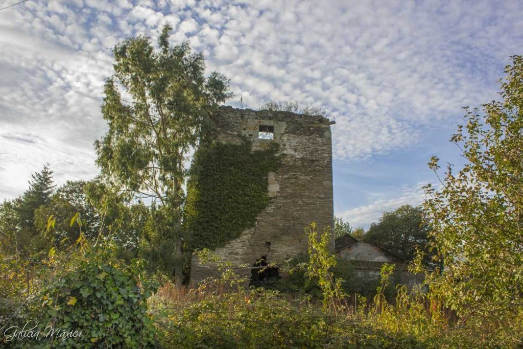 Torre de Sobrada con vegetación