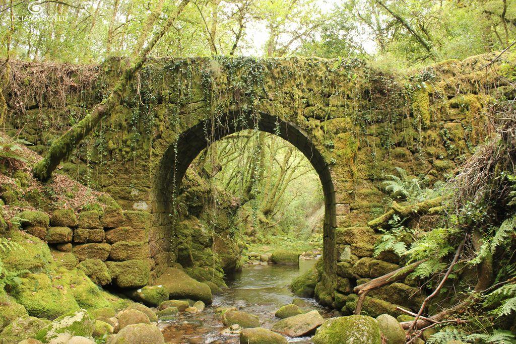 Ruta puentes Tea