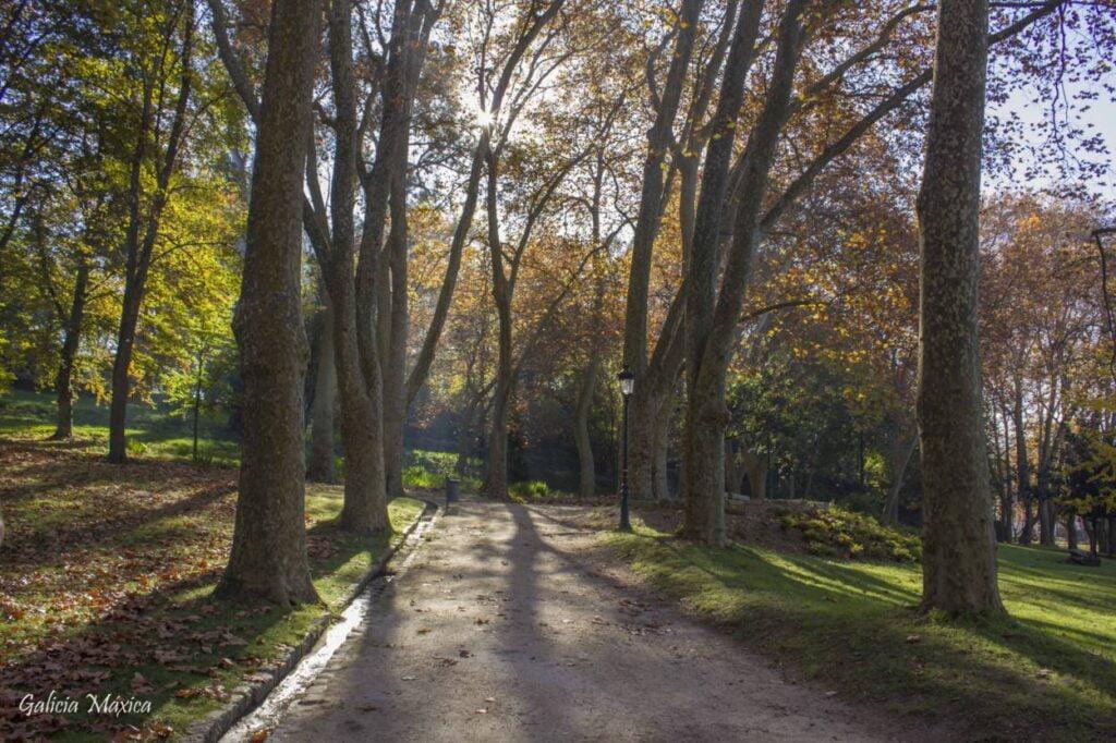 Paseo de Castrelos