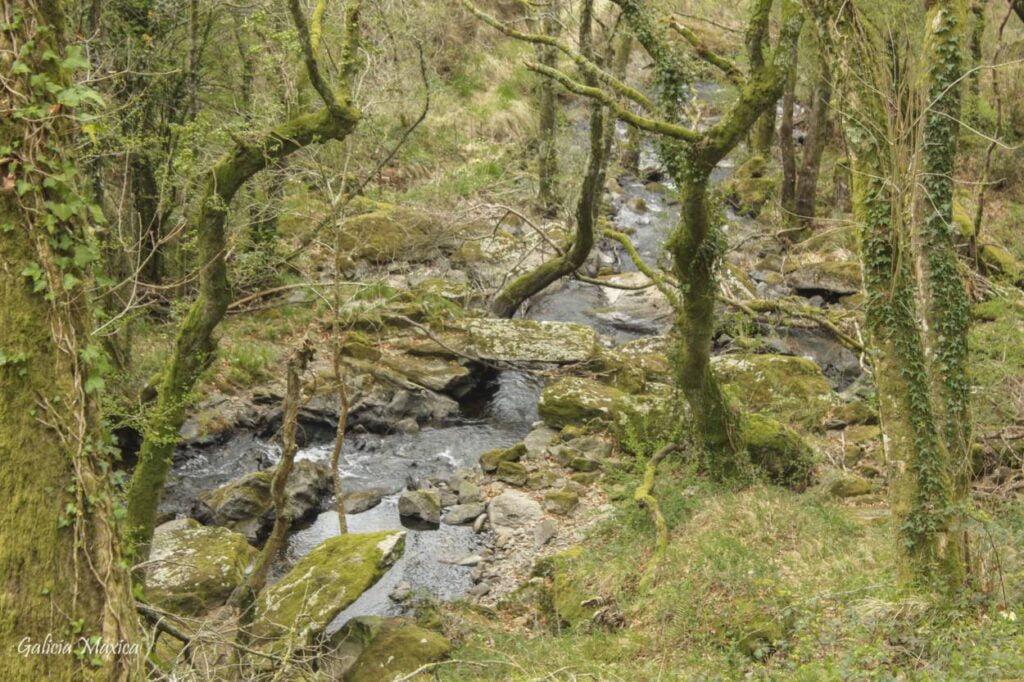 Río Furelos