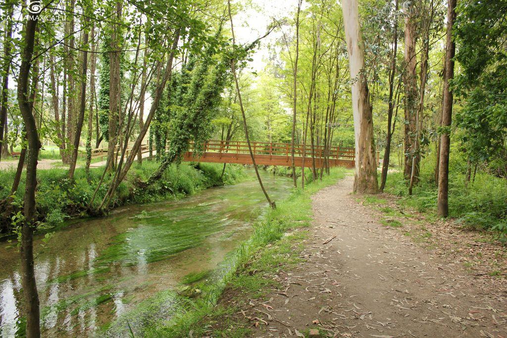 Paseo del Louro