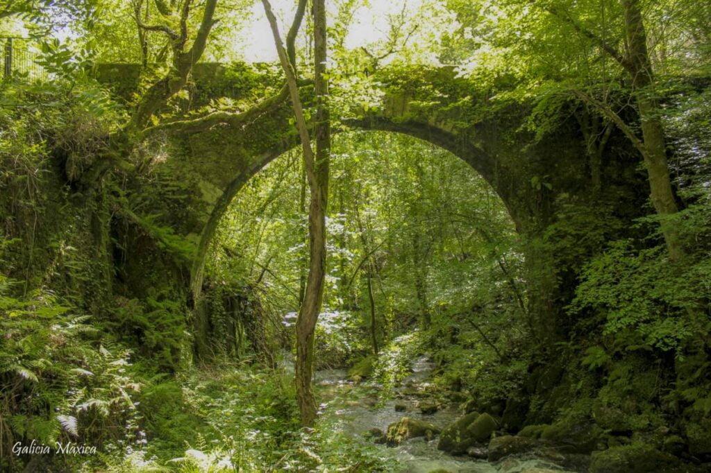 Puente río Sesín
