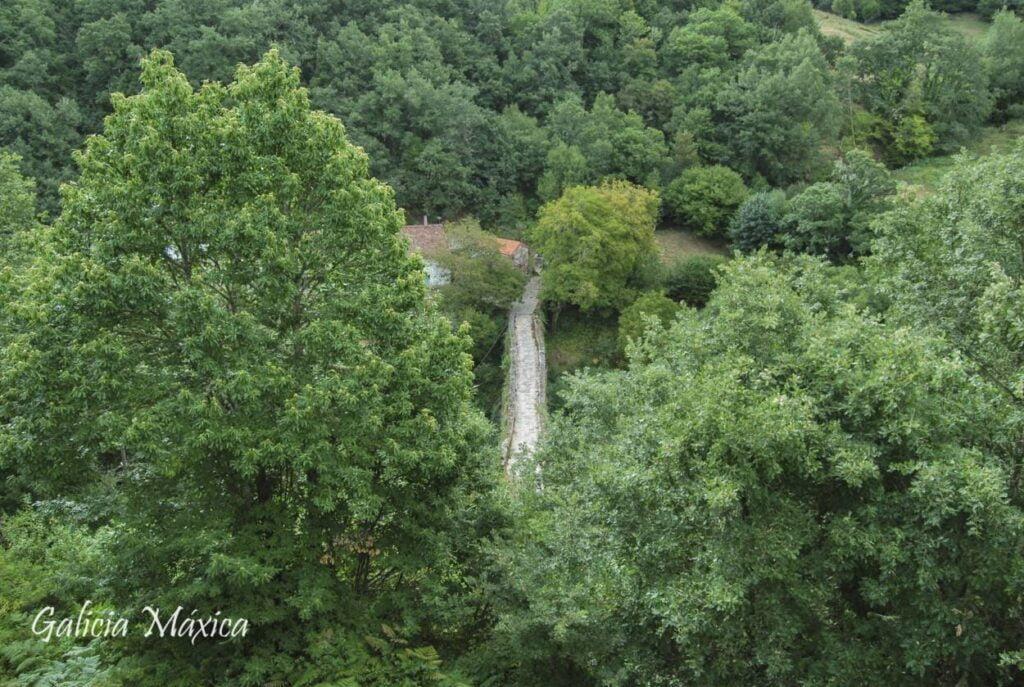Ponte Navea desde arriba
