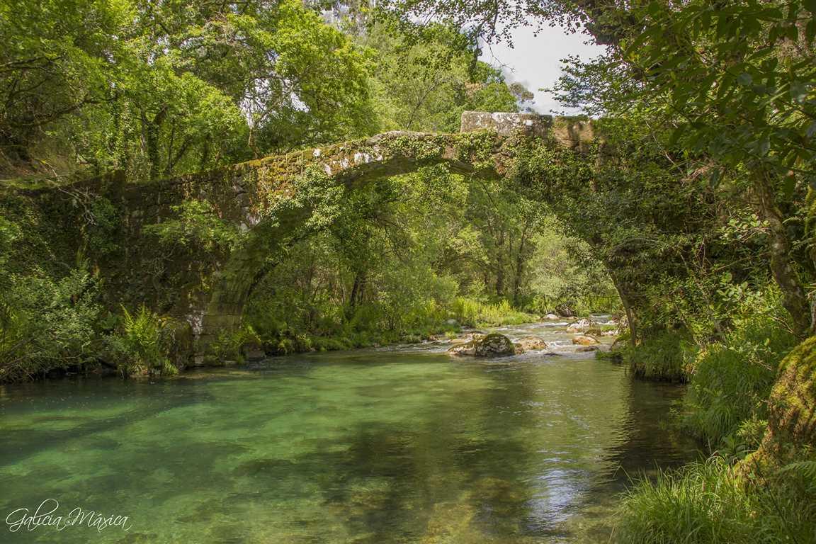 Puente de Fofe