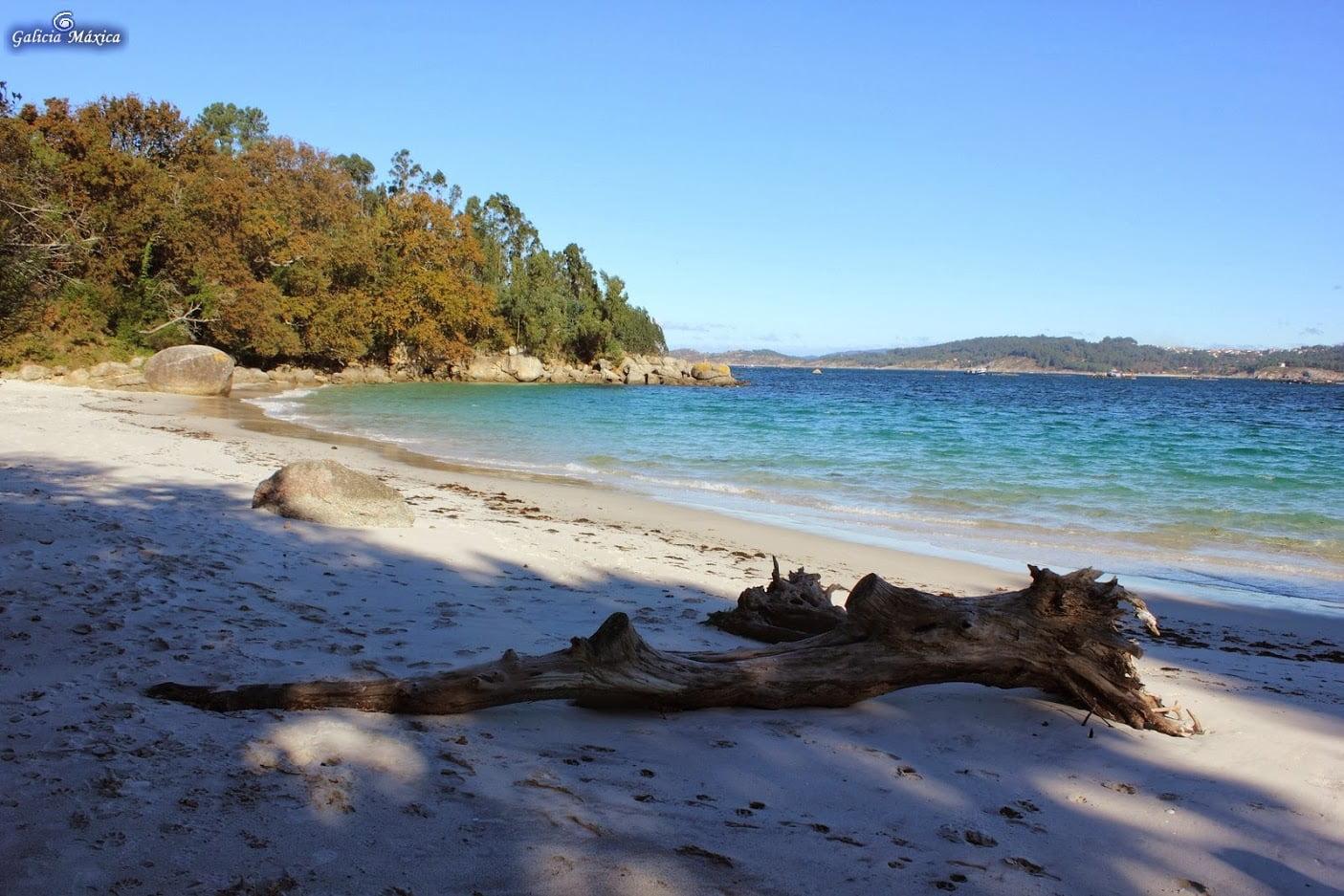 Playa de Castiñeias