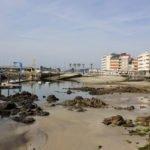 playas116