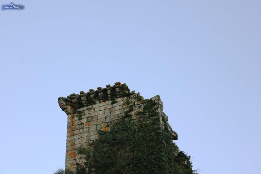 torresande18