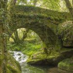 Puente Mangón - Pazos