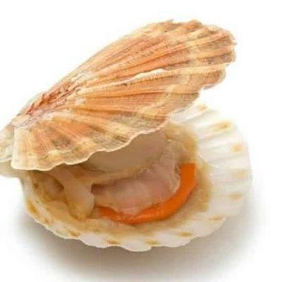 Gastronomía de Galicia