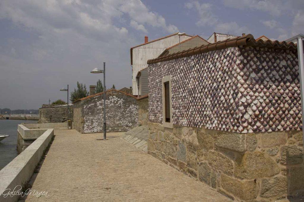 Casas cubiertas con conchas de vieiras