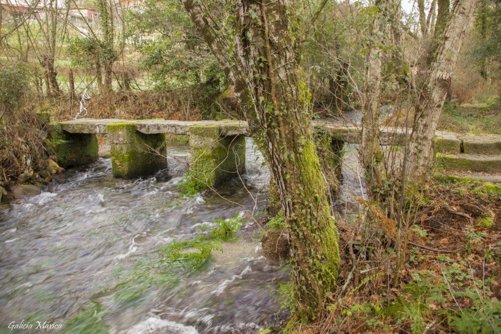 Puente, Pontella