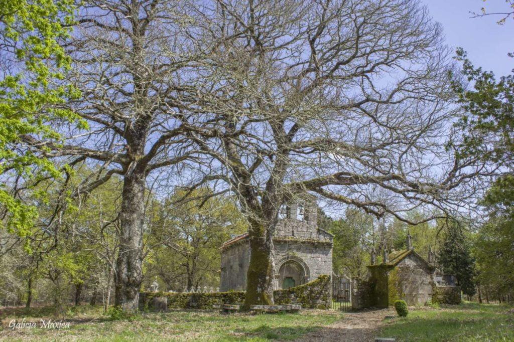 Iglesia de San Mamede de Moldes