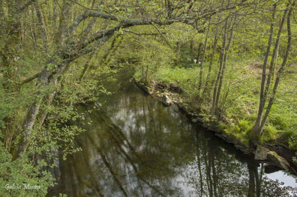 Río Mirela