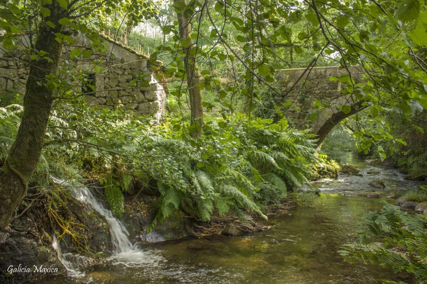 Molino y puente As Pontaleiras