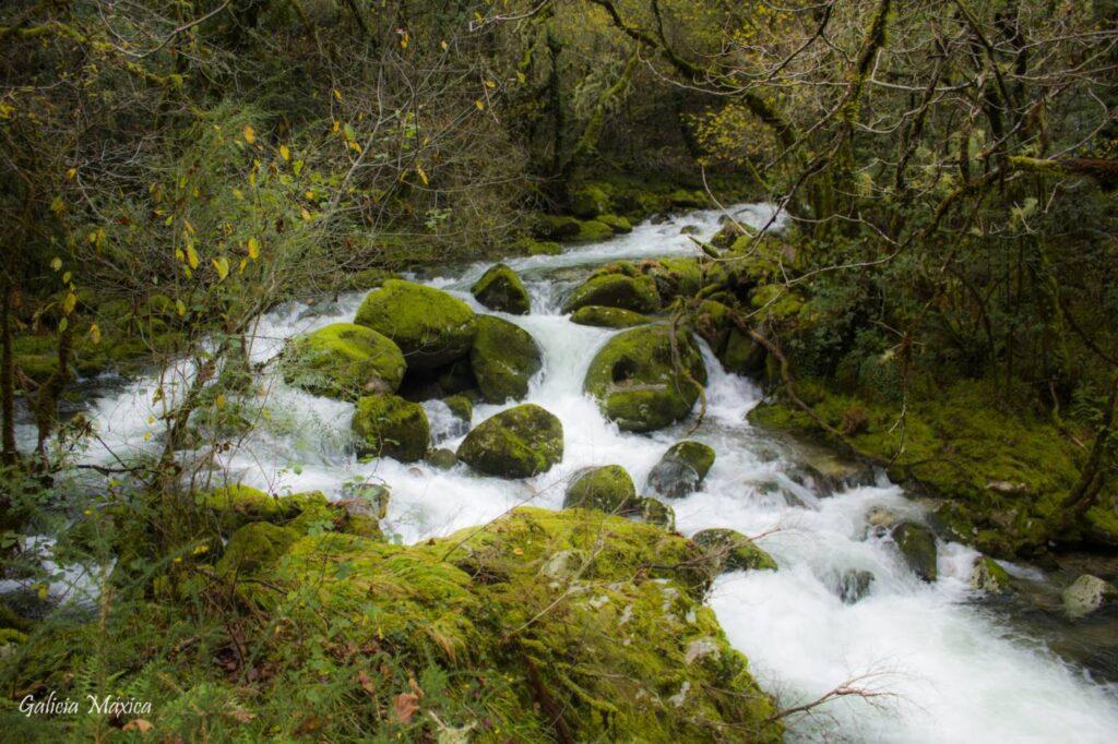 Río Alén en Covelo