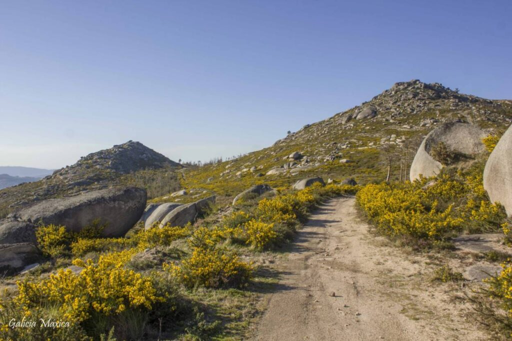 Pista de tierra de subida al Alto de Cales, en A Serra do Galleiro