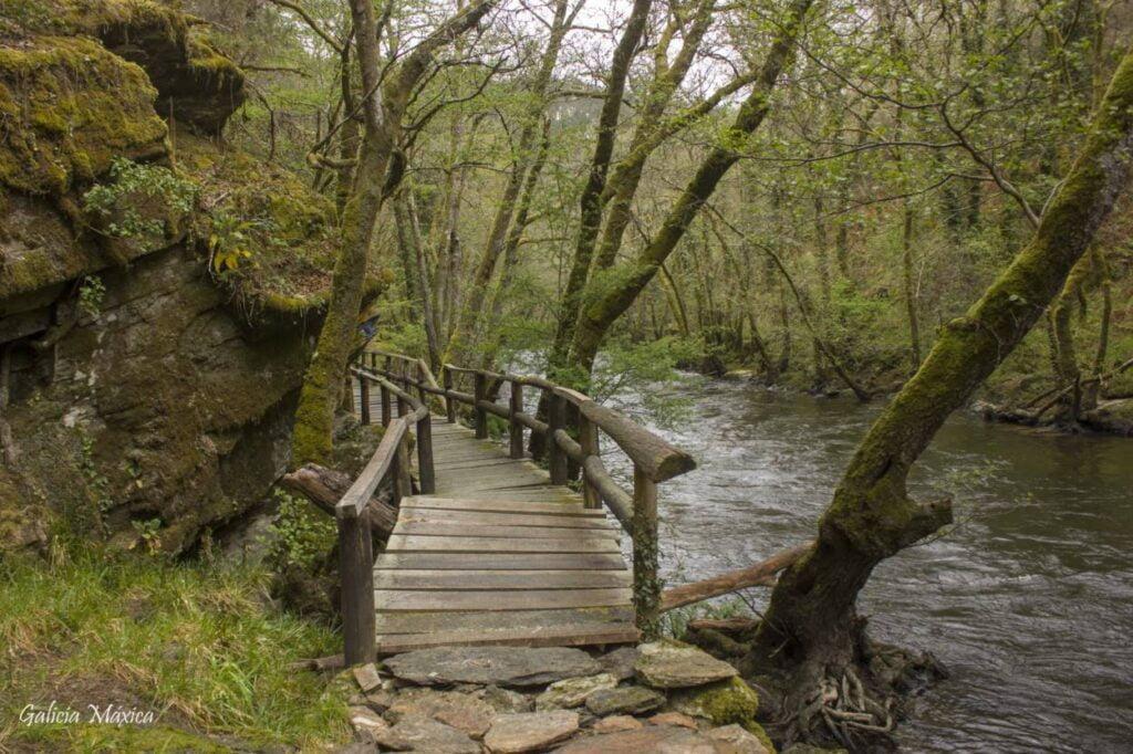 Pasarela río Arnoia