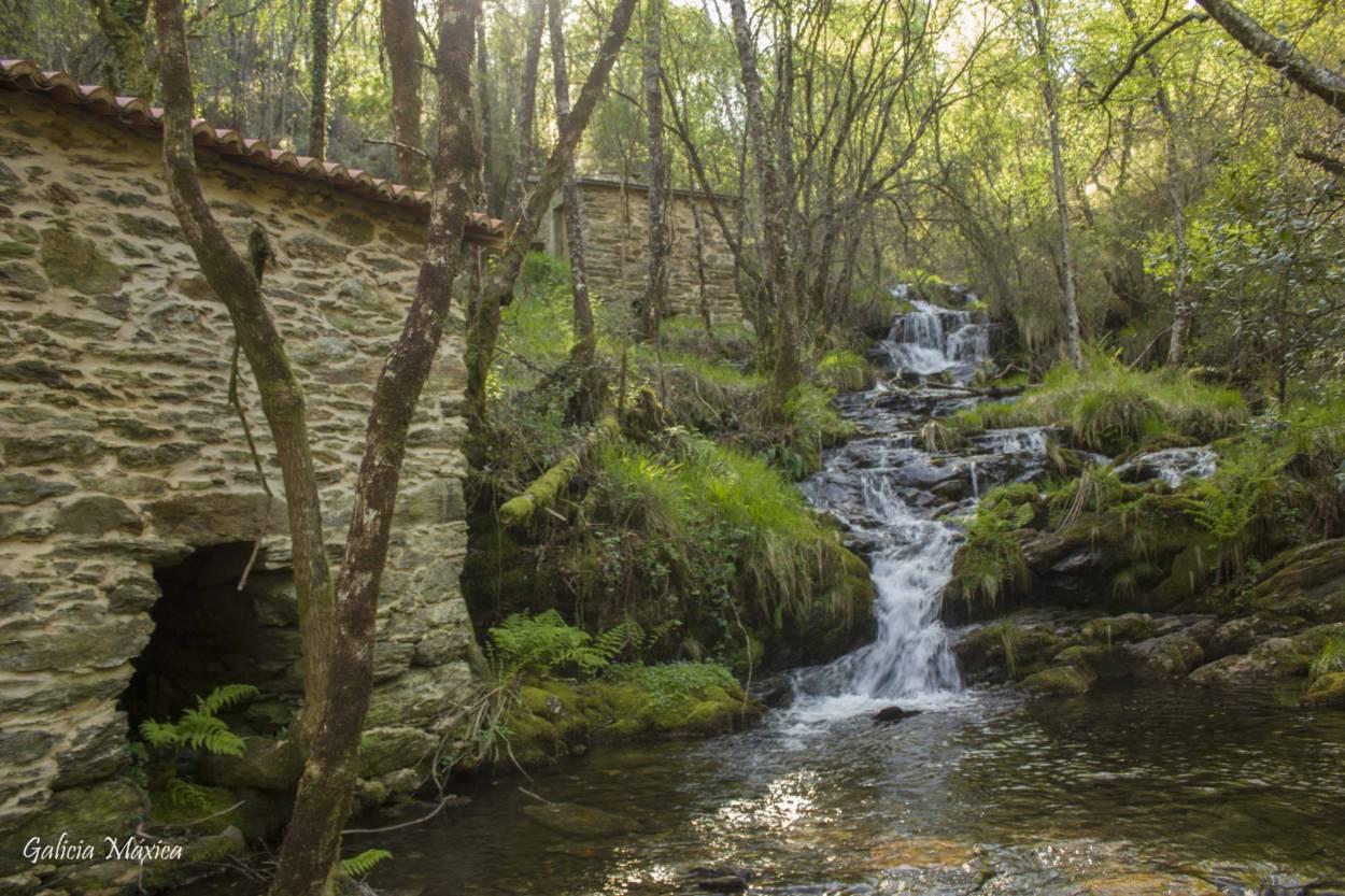 Cascada - Fervenza o Freixa da Chamosa en Forcarei