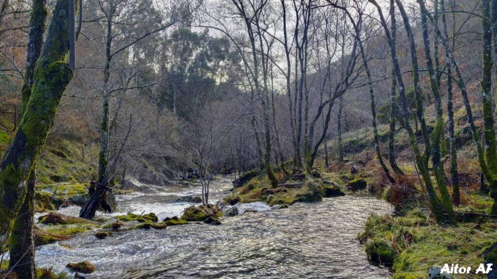 Río Pacín