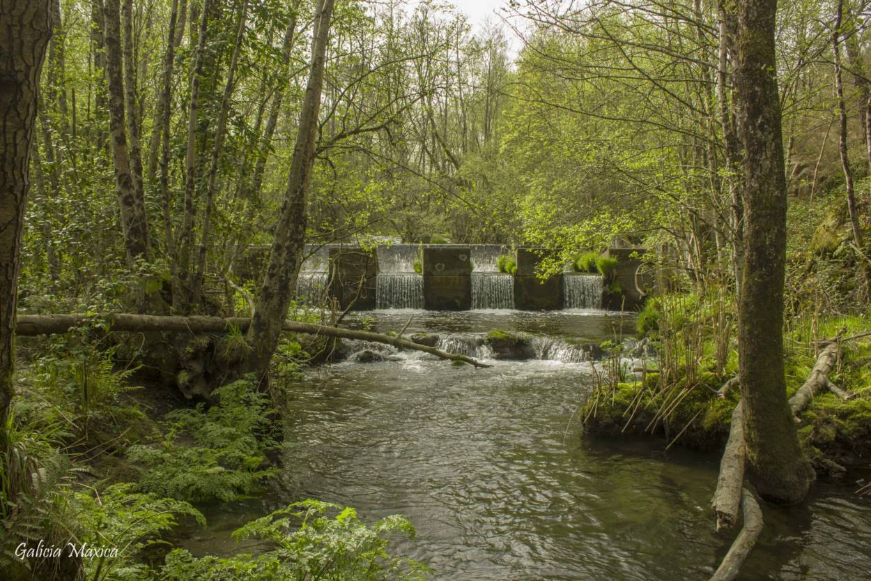 Molino y puente del Regato de Maquiáns o Maquiás