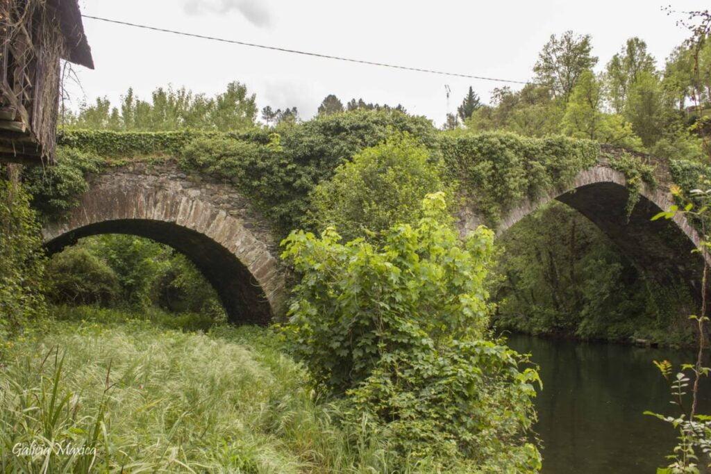 Arcos del puente