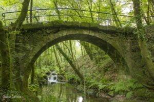 Puente río Maneses